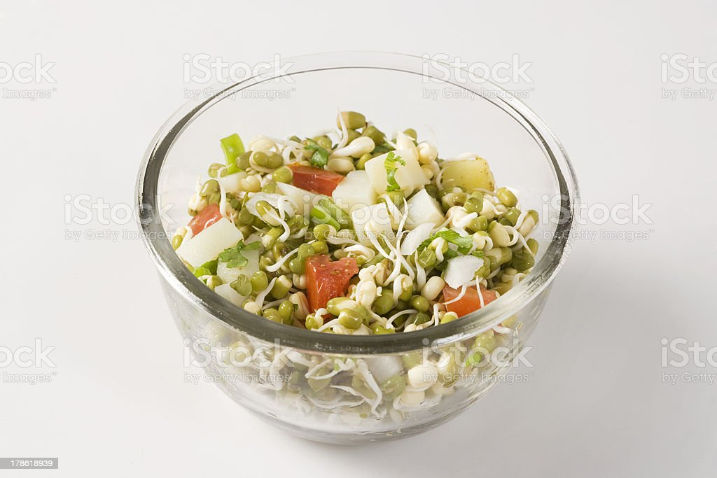 Bowl of sprouts Salad royalty-free stock photo