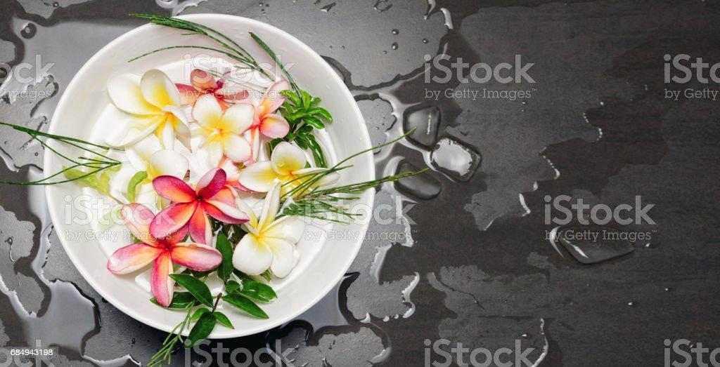 Schüssel mit Wasser mit Frangipani oder plumeria Lizenzfreies stock-foto
