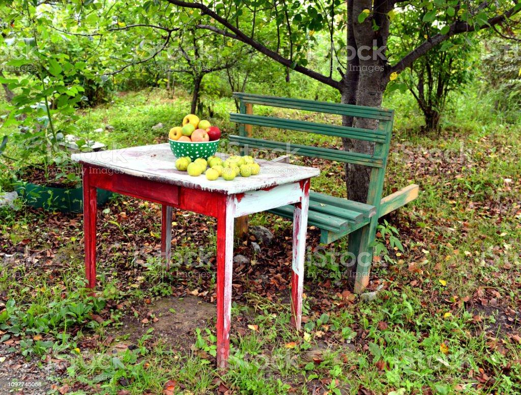 Vieux Banc De Jardin photo libre de droit de bol avec des pommes sur le banc