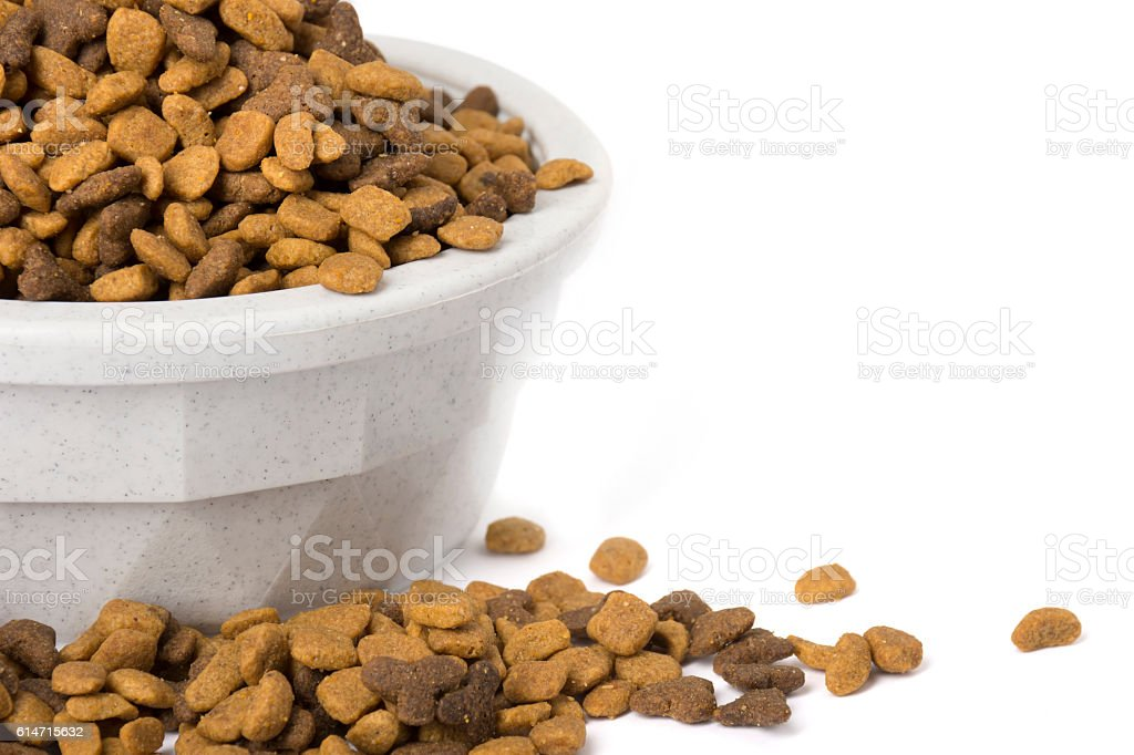 Bowl with dry cat food overflowing stock photo
