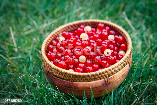 Wooden bowl with red and white currant on green grass