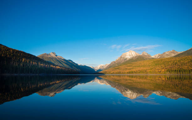 bowman lake fall sundown - us glacier national park stock pictures, royalty-free photos & images
