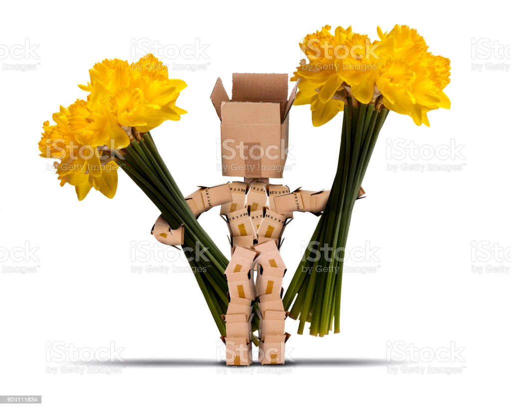 Box character holding large bunches of daffodils stock photo