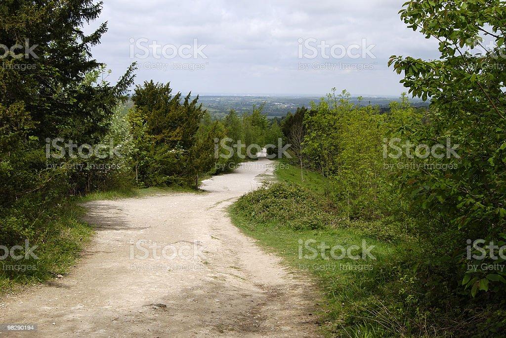 Box Hill. Surrey. Inghilterra foto stock royalty-free