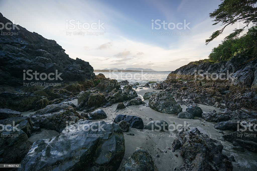 Box Island, Tofino, British Columbia stock photo