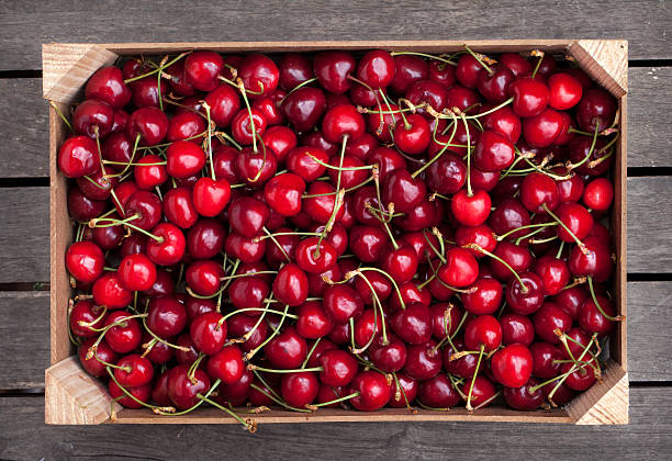 Box of cherries stock photo
