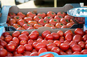 Box of plumb and beefsteak tomatoes on disply
