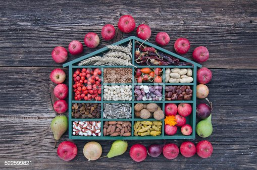 istock box with various fruits, nuts and spices 522599821