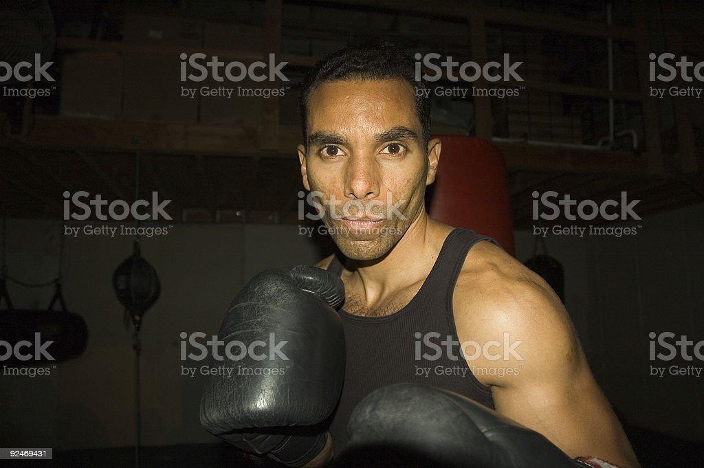 Boxer - 6 royalty-free stock photo
