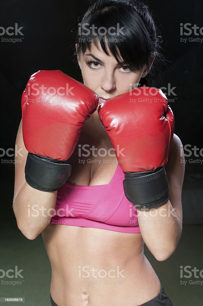 Boxer Female royalty-free stock photo