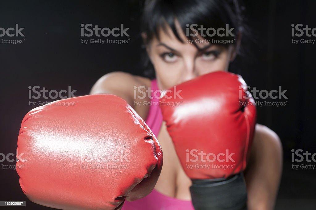 Boxer Female royalty-free stock photo