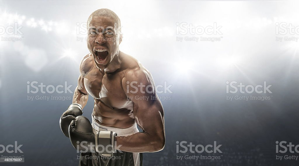 Boxer Getting Ready stock photo