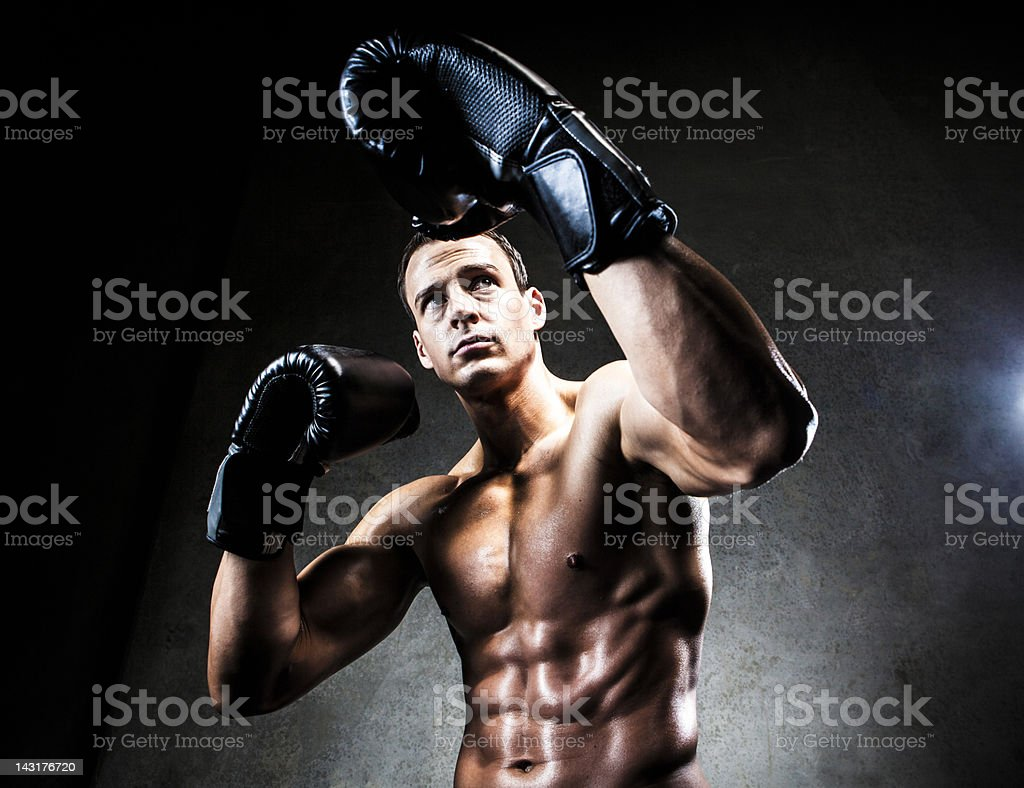 Boxer in defensive pose royalty-free stock photo