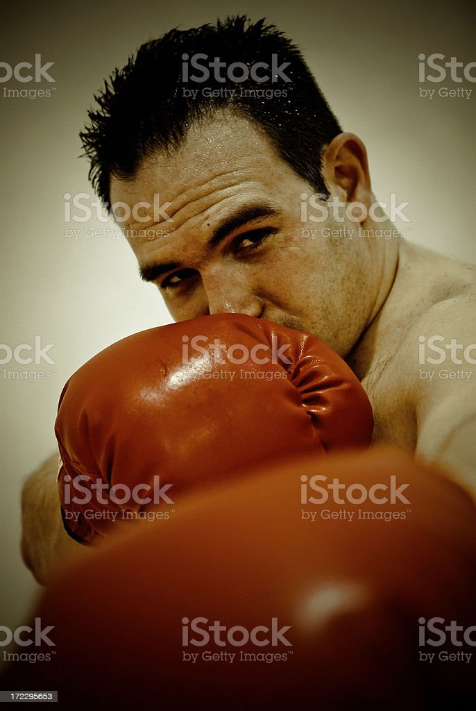boxer in grunge stock photo