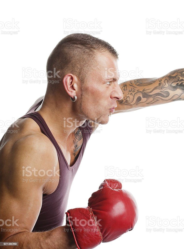 Boxer in the fight stock photo