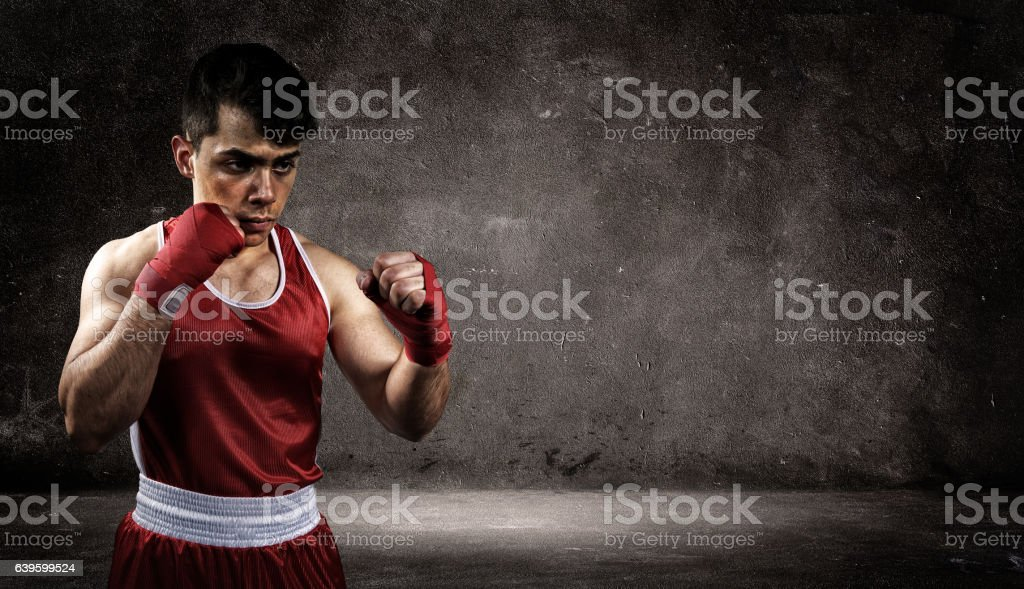 Boxer is in front of the wall stock photo