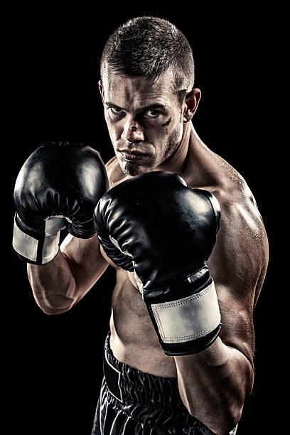 Boxer isolated on black stock photo