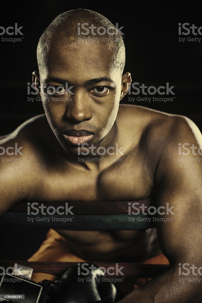 boxer leaning on ropes royalty-free stock photo