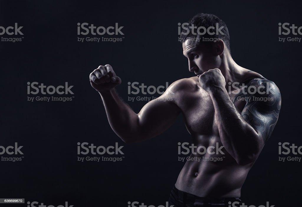 Boxer on black stock photo