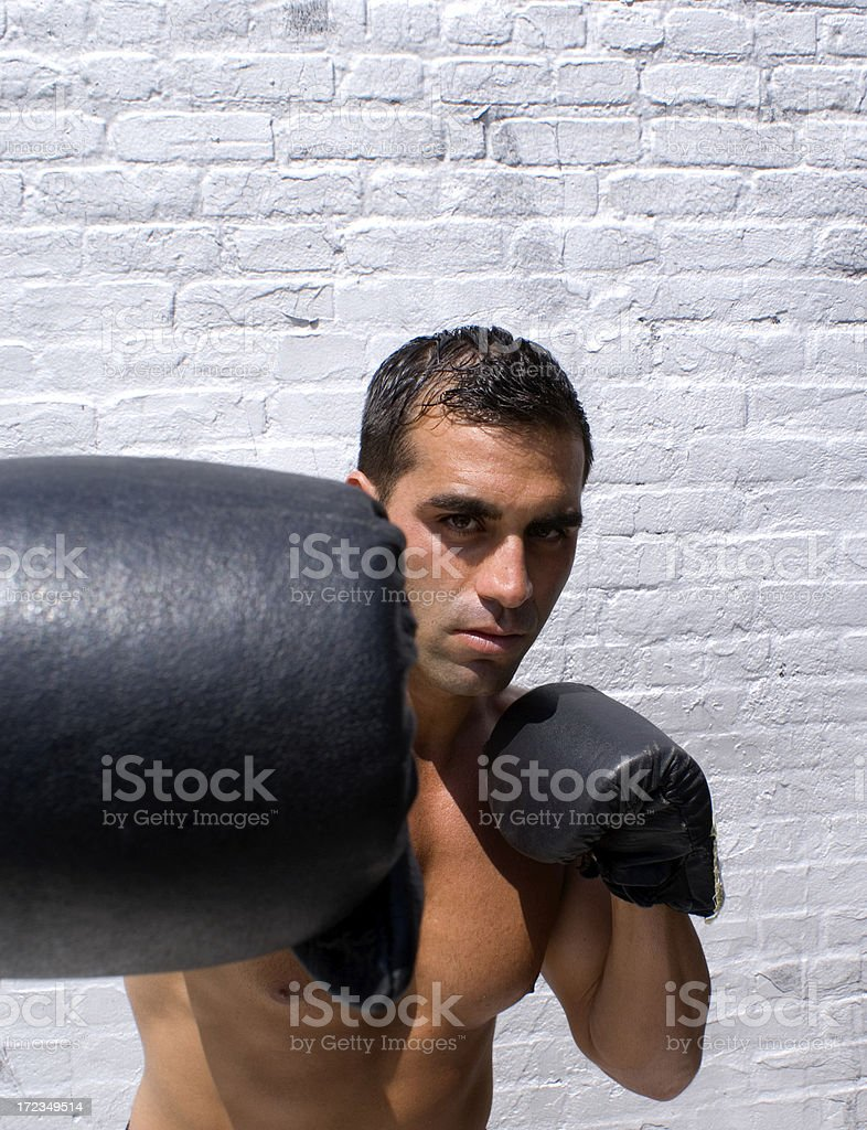 Boxer royalty-free stock photo