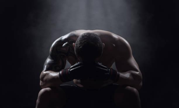 Boxer - Photo