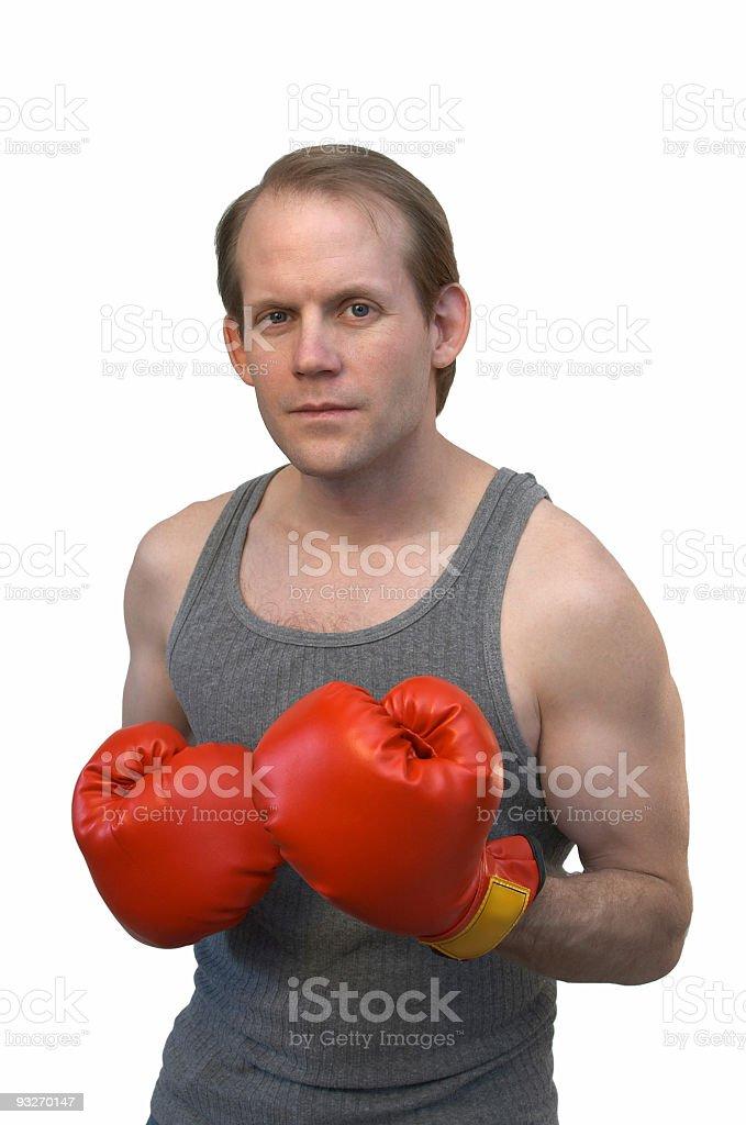 Boxer #1 royalty-free stock photo