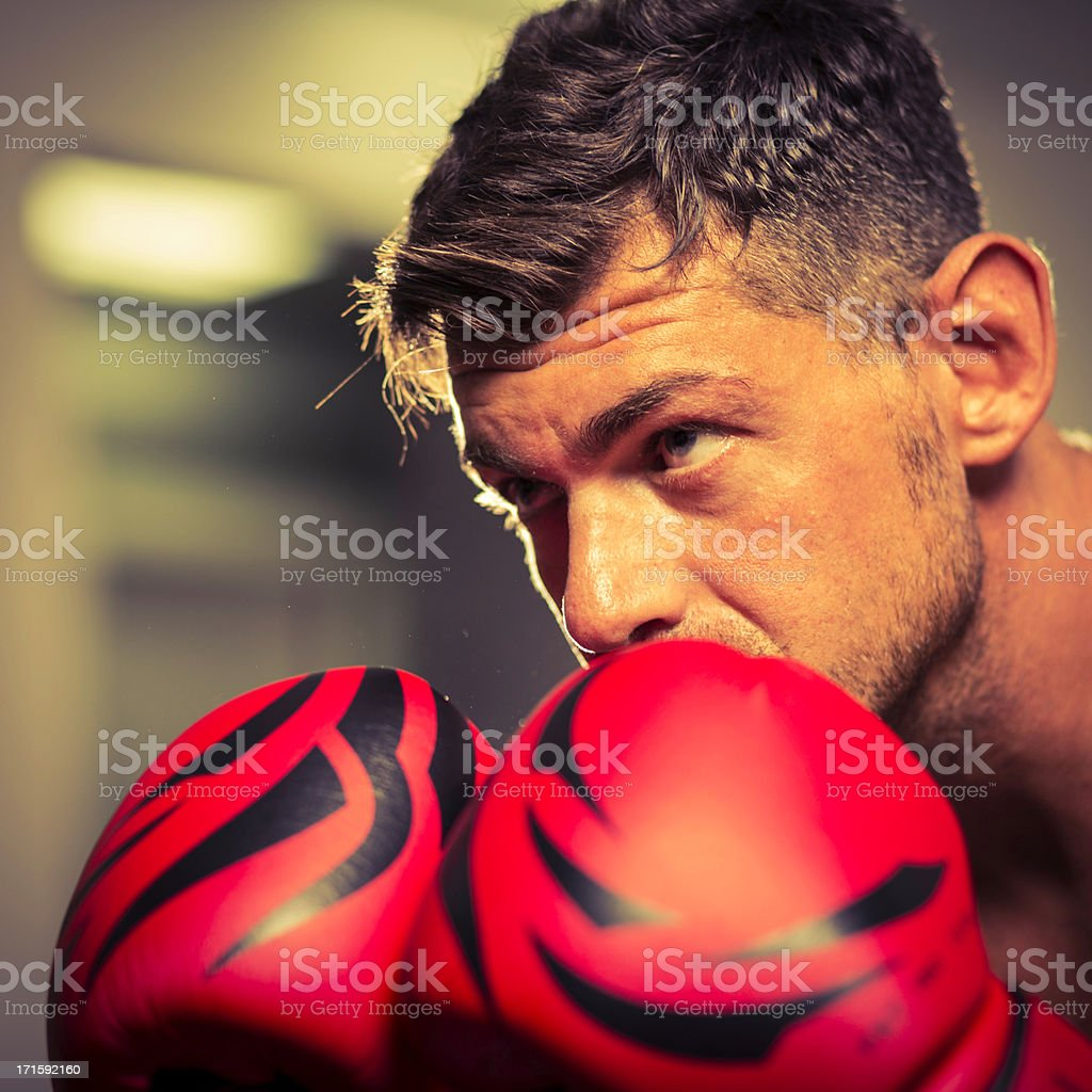 Boxer ready for fight royalty-free stock photo