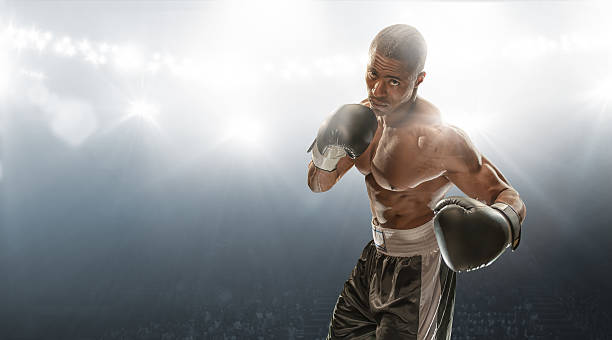 Boxer Ready To Fight stock photo