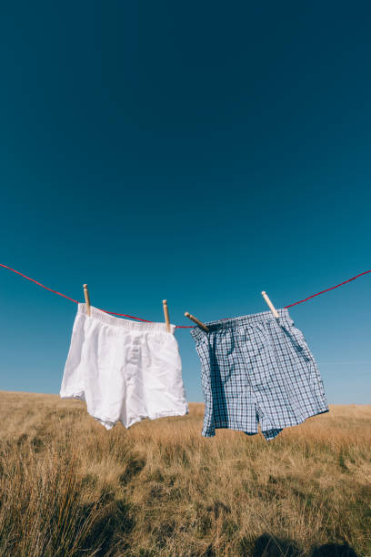 boxer shorts on a washing line, rural setting. - washing line stock photos and pictures