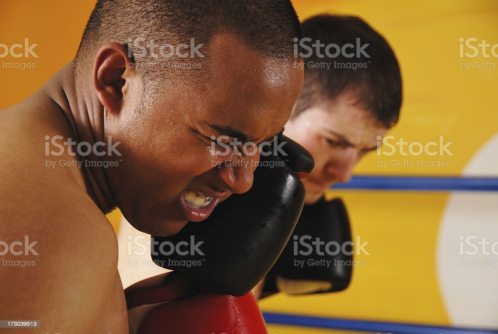 Boxer Taking a Punch royalty-free stock photo