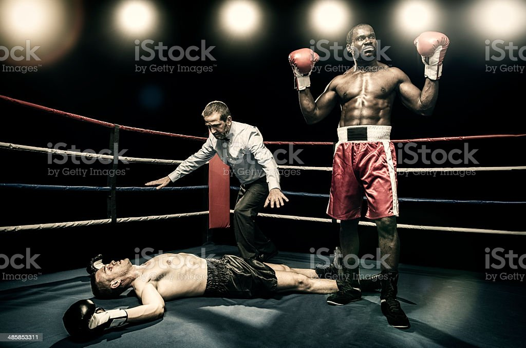 Boxer victory stock photo