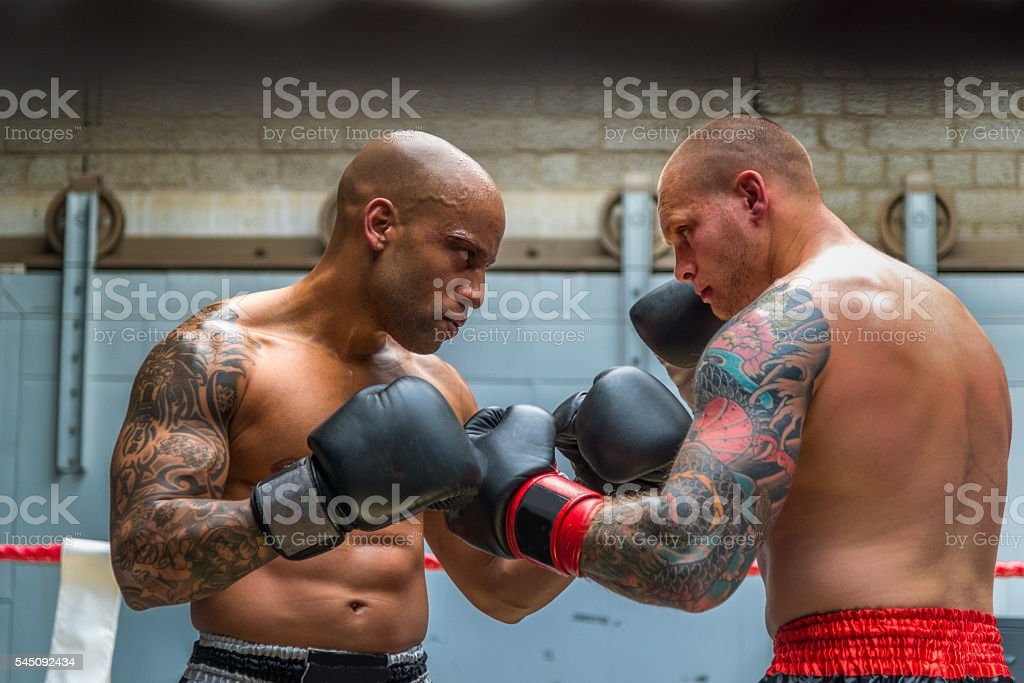 Boxers fighting boxing ring stock photo