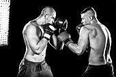 istock Boxers 518525716