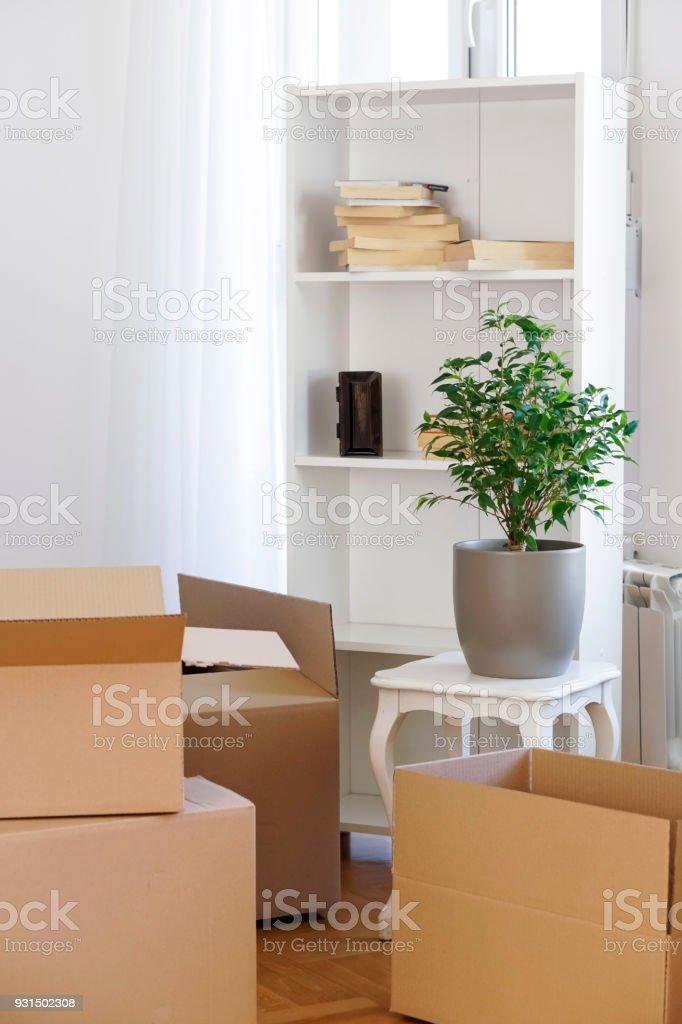 Boxen in neue Wohnung – Foto