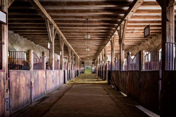caixas no velho estábulo cavalo na fazenda - celeiros - fotografias e filmes do acervo