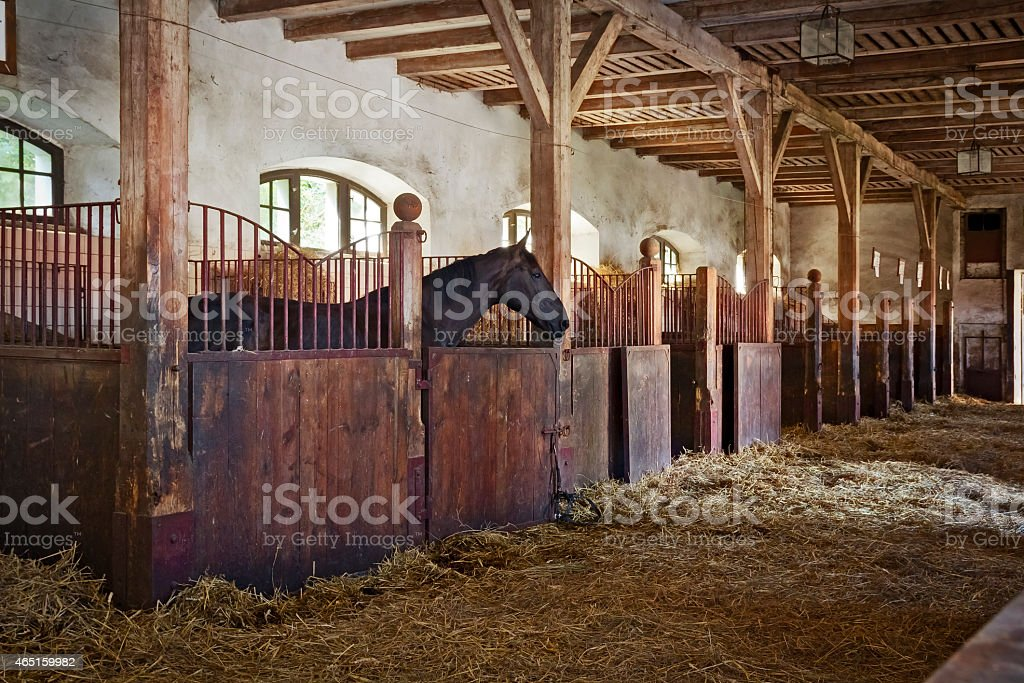 Boxes in the old horse stable stock photo