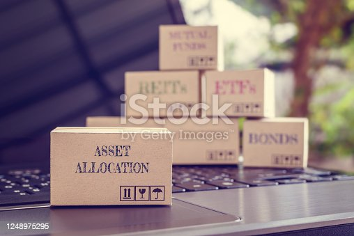 Online asset allocation / portfolio risk diversification for long-term sustainable growth concept