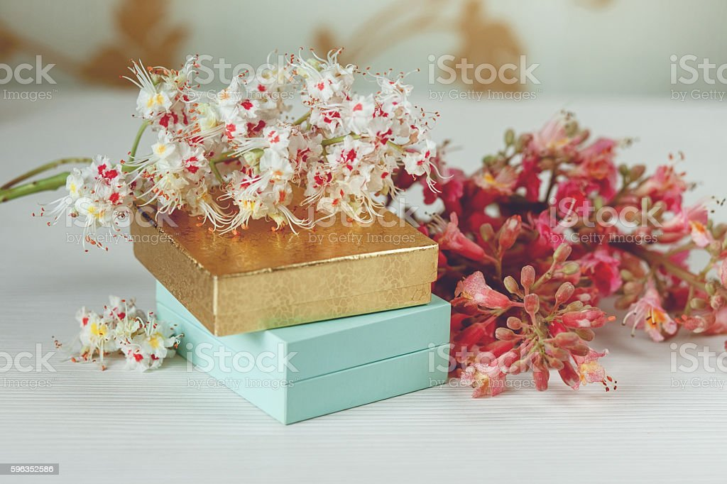 Boxes with Branches of Chestnut Tree.White Table royalty-free stock photo