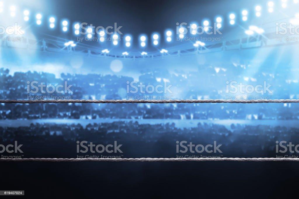 Boxing arena royalty-free stock photo