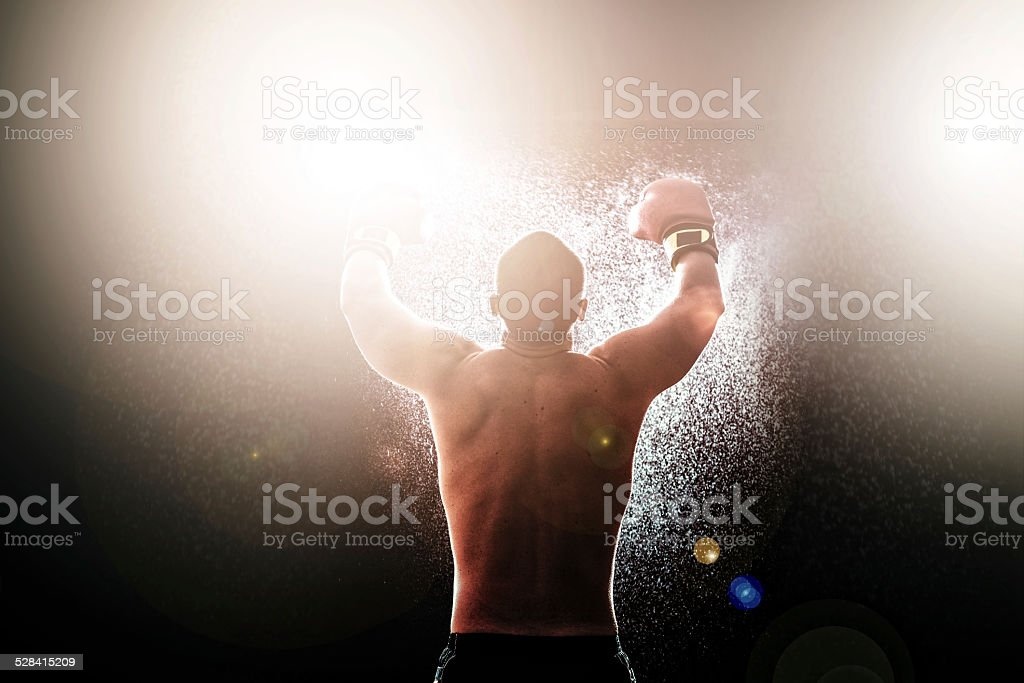 Boxing champion stock photo