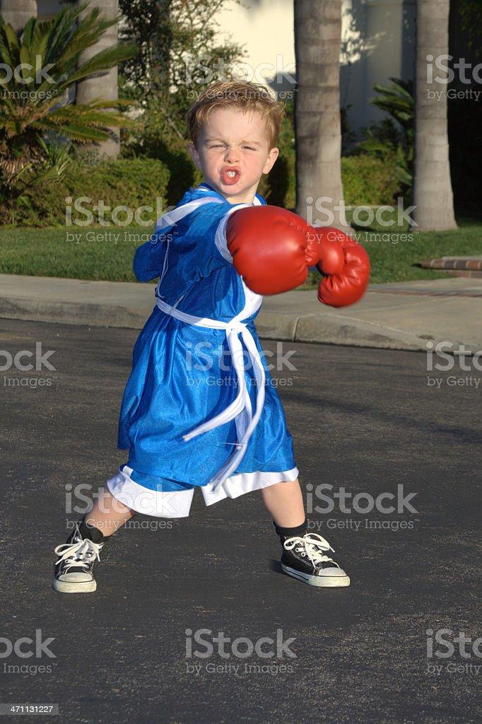 Boxing child royalty-free stock photo