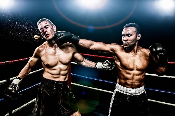 Boxing combat stock photo