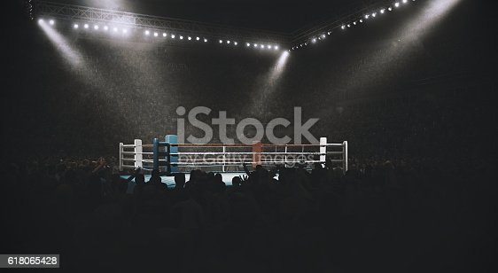 3D made empty professional indoor ring with crowd on the bleachers with intensional lenseflares and fog.