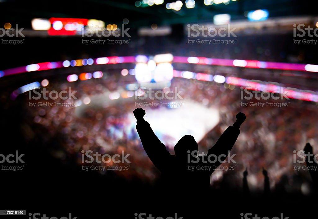 Di boxe entusiasmo - foto stock