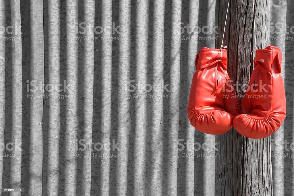Boxing Glove stock photo