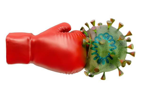 帶冠狀病毒的拳擊手套手套,在白色背景上隔離的 3d 渲染 - 毆打 個照片及圖片檔