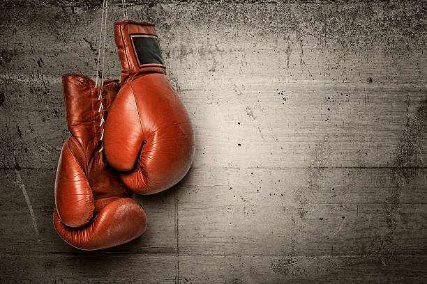 Boxing gloves hanging on concrete wall stock photo