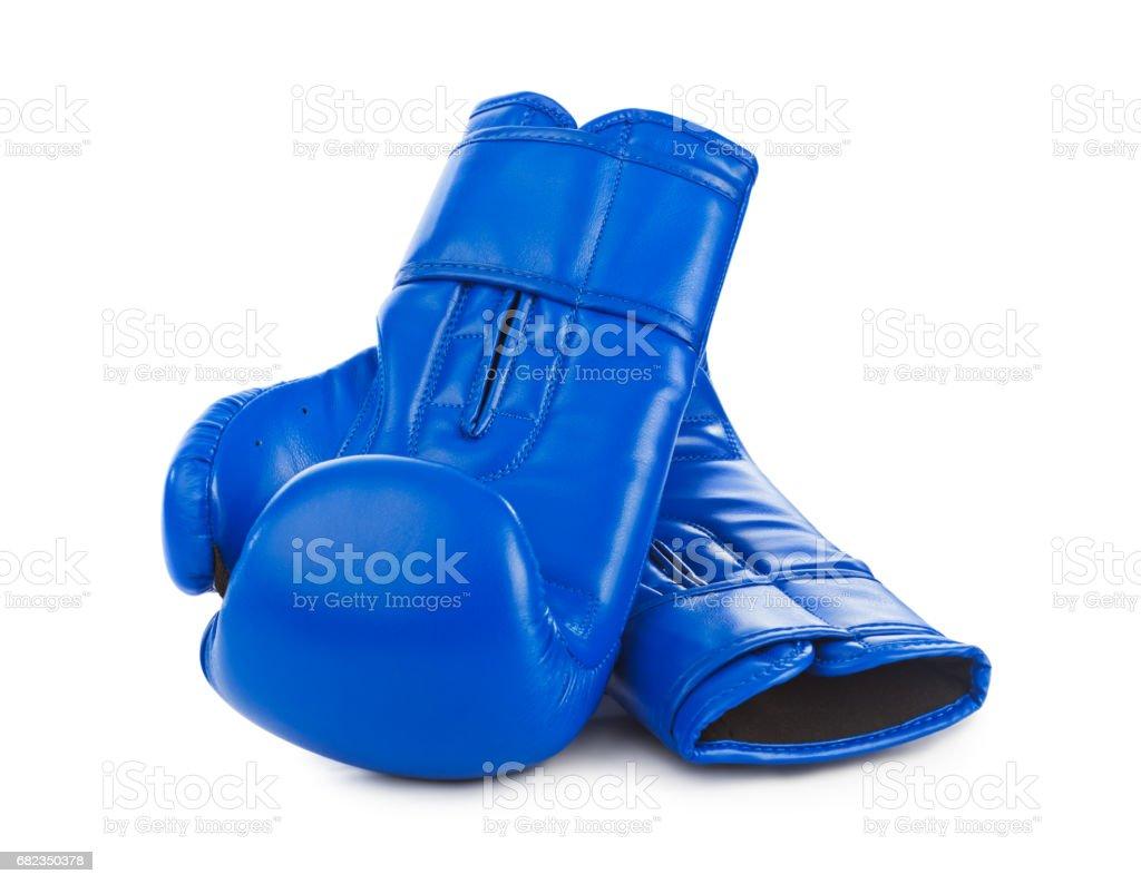 Boxing gloves royaltyfri bildbanksbilder