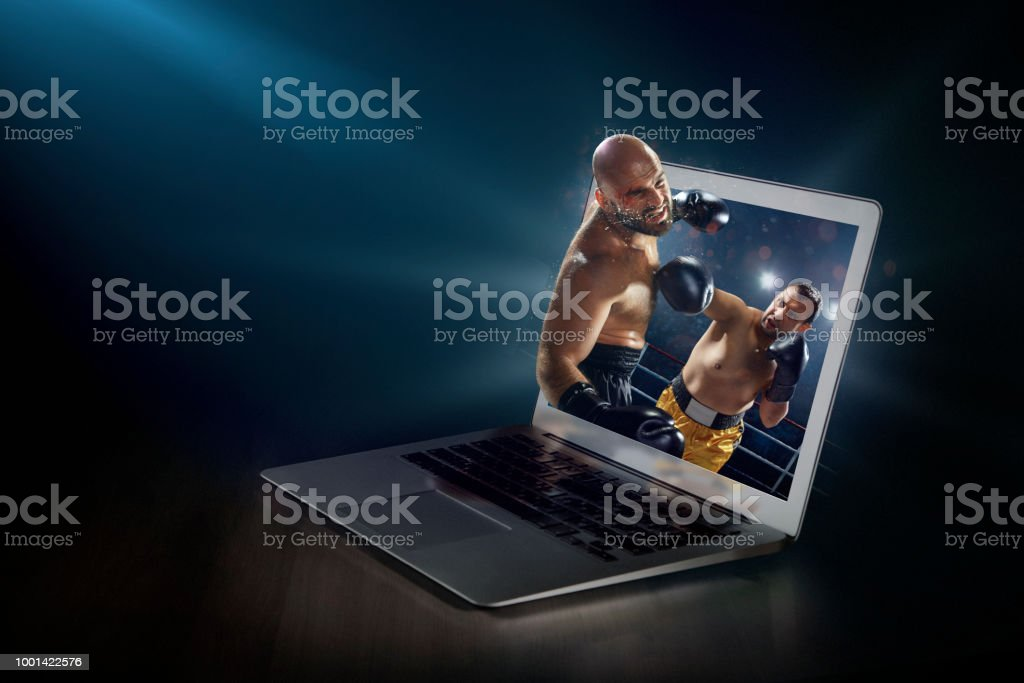 Boxing on laptop. Live broadcast stock photo