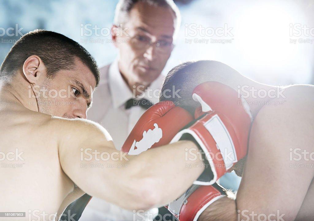 Boxing! royalty-free stock photo
